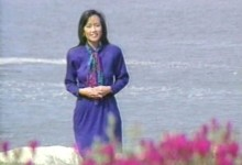 Heidi Chang TV Reporter, Monterey, California